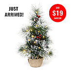 DELUXE FROSTED CHRISTMAS TREE-60CM + 2MTR WW FAIRY LIGHTS