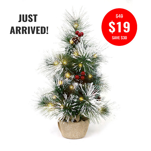 Deluxe Frosted Christmas Tree 60cm 2mtr Ww Fairy Lights