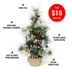 60cm Table Top, Deluxe Snow Frosted Christmas Tree + 2mtrs Warm White Fairy Lights