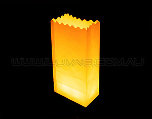 10 x Candle Bags / Luminarias: Plain